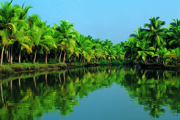 News - Kerala tourism recognised by UN experts